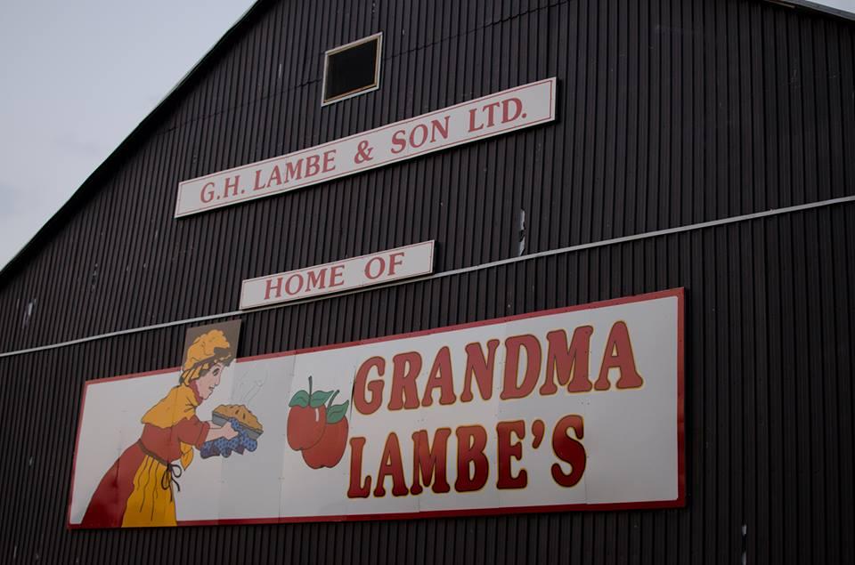 grandma-lambes